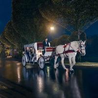 Carriage Rides at Opryland
