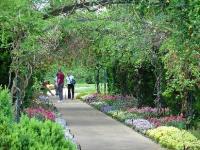Cheekwood Museum and Gardens