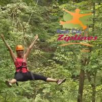 Ziplining in Nashville at the Fontanel