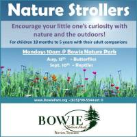 Nature Strollers