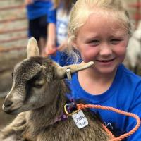 Summer Camp at Lucky Ladd Farms
