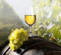 Chateau Ross Vineyard & Winery