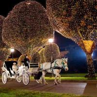 Where to view Christmas Holiday Lights in Nashville and Middle Tennessee