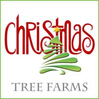Nashville Christmas Tree Farms
