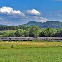 Valentine's Day Murder Mystery Excursion Train