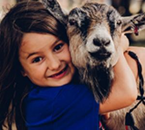 Lucky Ladd Farms - TN's Largest Petting Farm and Family Fun Park
