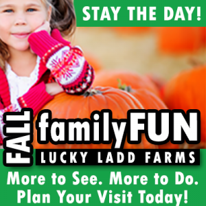 Stay the Day at Lucky Ladd Farm this Fall in Nashville