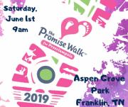 Promise Walk for Preeclampsia Nashville