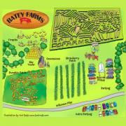 Batey Farms Corn Maze & Pumpkins