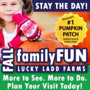 Lucky Ladd Farm - Fall 2018