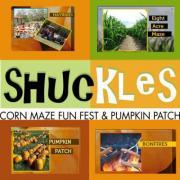 Shuckles Fall Festival