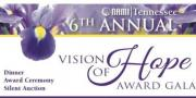 6th Annual Vision of Hope Award Gala