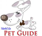 Pet Lovers Guide