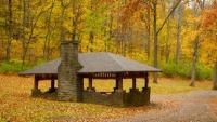 Percy Warner Park