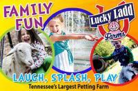 Summer Fun at Lucky Ladd Farms