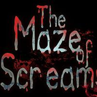 The Maze of Screams - Dead Land Haunted Woods