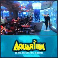 Great Family dining at Aquarium Restaurant in Opry Mills Mall, Nashville Tennessee