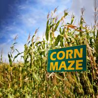 Best Corn Mazes in Nashville and Middle Tennessee