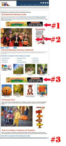 Landing Page Advertisements for Nashville