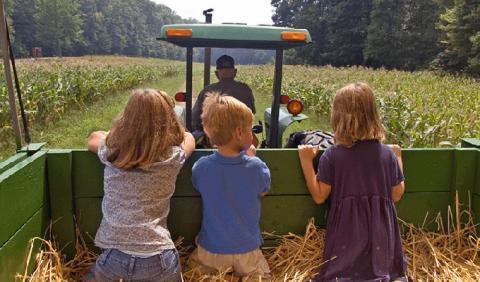 Kids on Hayride in Nashville Tennessee