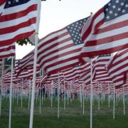 Field of Honor at Andrew Jackson's Hermitage