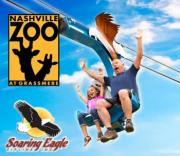 Soaring Eagle Zipline