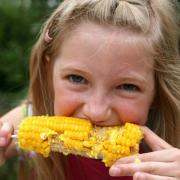 Come on out to Lucky Ladd's Sweet Corn Festival. Win prizes in fun Corn Eating and Corn Shucking contests.