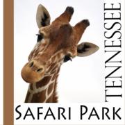 Tennessee Safari Park in Alamo Tennesee