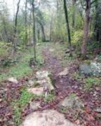 Shutes Branch Mountain Bike Trail